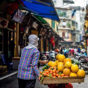 secreto extracto de pomelo hanoi